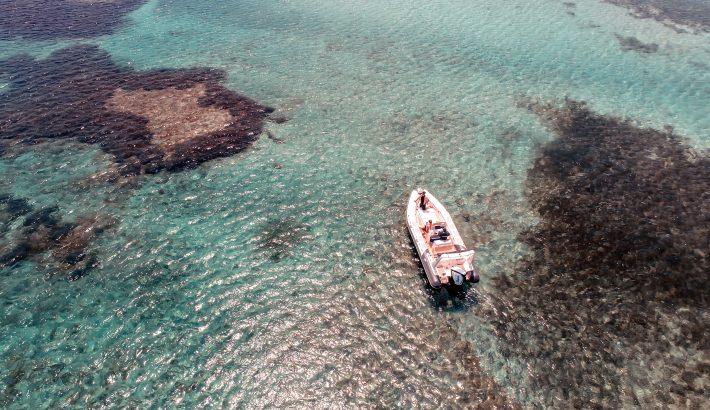 Embarcaciones pequeñas y económicas para alquilar en Ibiza
